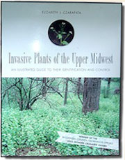 Invasive Plants of the Upper Midwest book cover by Elizabeth J. Czarapata